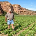 Technology aids farmers amid water crisis