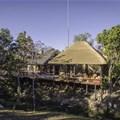 Camp Ndlovu. Photo: Booking.com