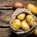 Farmers in dilemma as potato prices drop