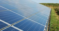 Chinese solar boom sparks global renewables boon: study