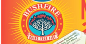 MTN Bushfire makes top festival list