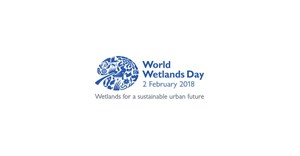 #WorldWetlandsDay: Protect, conserve SA's wetlands