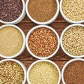 Ancient grains become modern food