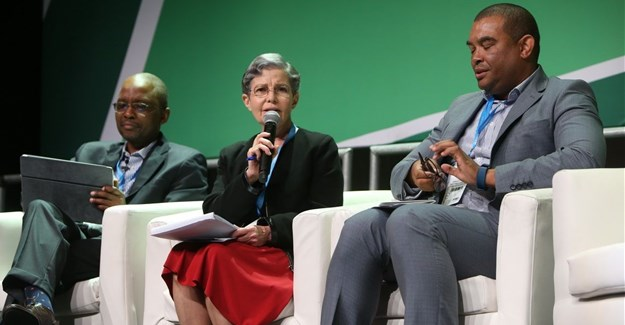 Mxolisa Mgojo, CEO: Exxaro Resources, Hilary Joffe, and Rudi Dicks, Department of Performance Monitoring and Evaluation in the Presidency.