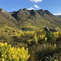 More than an apple a day in Grabouw's tourism future
