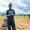 How Nigeria's Thrive Agric is crowdfunding farmers
