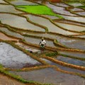 Paolo Crosetto via  - Rice paddies in Madagascar