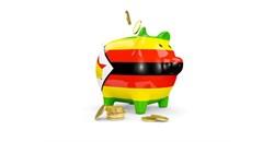 Zimbabwe's economic recovery presented to investors