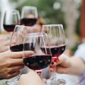 Western Cape wine tourism grows by 16%, lesser known wine routes enjoy increased popularity