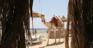 Egypt sees tourism rebound ahead of vote