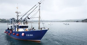 Centre to fight illegal fishing to be set up