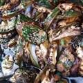 Hefty sentences for abalone smugglers