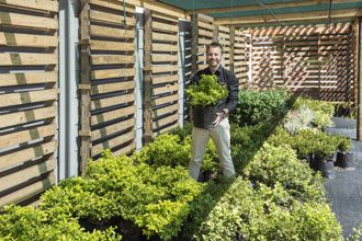 Scan Display Cape Town's new water-wise plant nursery