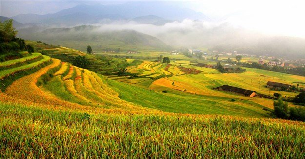 Newly designated Globally Important Agricultural Heritage Systems