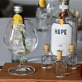 Hope on Hopkins gin (Image Supplied)