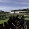 Norval Foundation sculpture garden (Image Supplied)