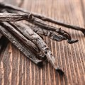 Insights into the global vanilla market