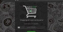 Kenya's Wagon Shopping posts strong growth as it seeks funding