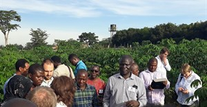Dr Titus Alicai during the delegates' visit to The National Crops Resources Research Institute