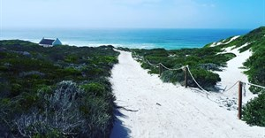 Whiling away days at De Hoop - a nature lover's respite