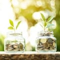 Not just cash: what else can investors offer your startup?