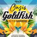 GoldFish to headline the Oasis Experience