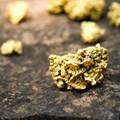 KZN 'gold rush' halted