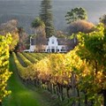 Constantia Valley celebrates 333 years