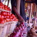 FAO's how-to guide to transforming food and agriculture