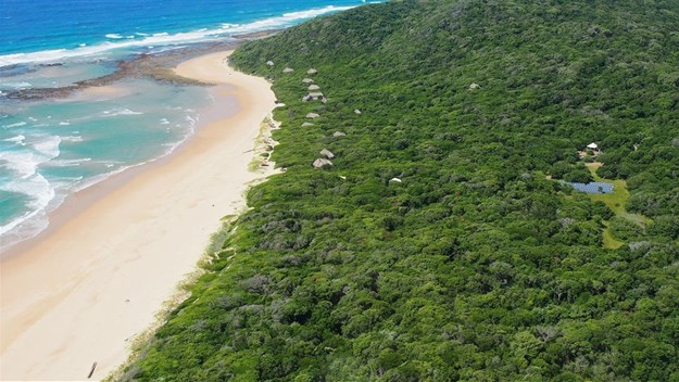More than a 1000 endangered turtles nest along the shore of the Ponta do Ouro Partial Marine Reserve each year.