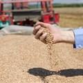 Agribusiness Confidence Index: SA agribusiness remains optimistic albeit index decline