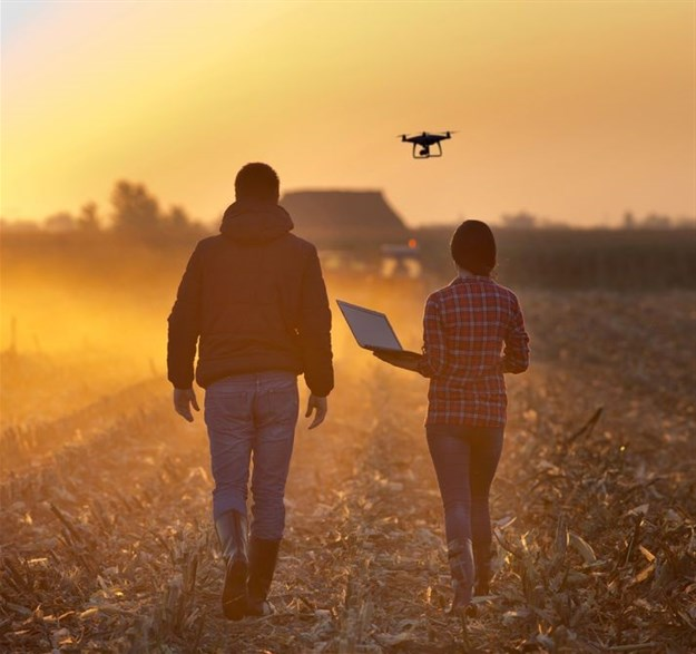 Why agribusinesses see IoT data security as a challenge