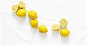 Key insights into the global lemon market