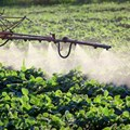 Why it's time to curb widespread use of neonicotinoid pesticides