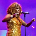 Tina: Simply the Best debuts in Johannesburg