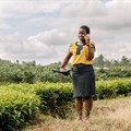 AWIEF's #Value4Her programme is empowering women agri-entrepreneurs in Africa