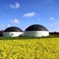 Maximising profitability of biogas plants