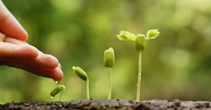 AIU secures R150m Cape agribusiness investment