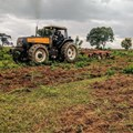 CIAT, Alluvial partnership scales up Nigerian agritech innovation