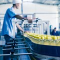 ERP to underpin food traceability market