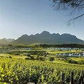 Kleine Zalze: Introducing the best new world producer of the year