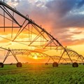 African agriculture has a lot to gain from increased access to big data