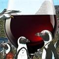 Durbanville Hills reveals whimsical new wine range
