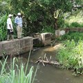 How Africa can up its game on water management for agriculture