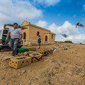 A South African's guide to moving to and making it in Malta: Birds do it, bees do it