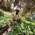 What role can Africa play in contributing to global food security?