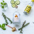 Meet the Maker: Sugarbird Cape Fynbos Gin