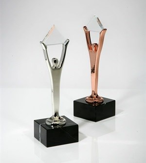 Final call for entry to the Stevie Awards for Women in Business