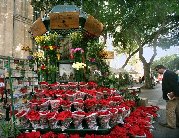 A South African's guide to moving to and making it in Malta: Everything's coming up roses
