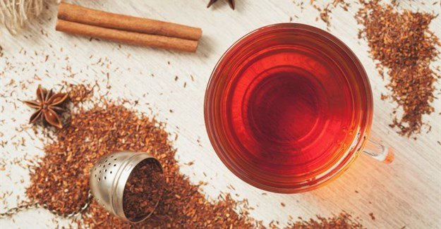 The evolution of rooibos tea, and why we love it